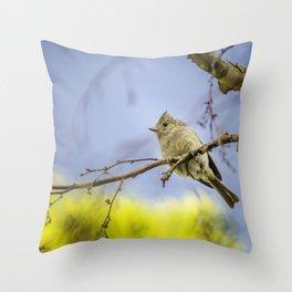 Spring time Bird, Nature Photography, Spring, Wall Art, Wall Hanging Throw Pillow