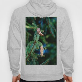 The hanging pinecones Hoody