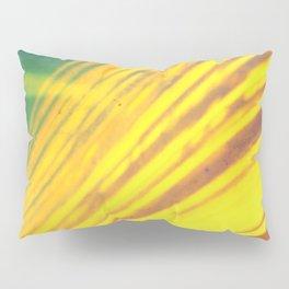 bridges of the sun (pinhole camera) Pillow Sham