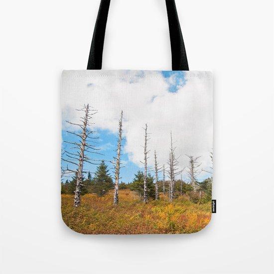 Trees in Mt. Rogers, Virginia Tote Bag