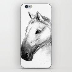 Horse Tales iPhone & iPod Skin