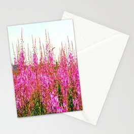 Field of lupins and wildflowers on Brier Island, Nova Scotia Stationery Cards