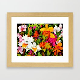 Tropical Exuberance Framed Art Print