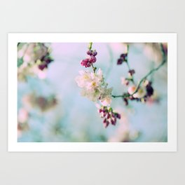 Cherry Blossoms pink Pastels Art Print