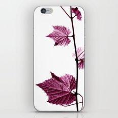 wine leaf abstract I iPhone & iPod Skin
