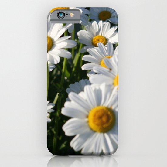 Daisy Love iPhone & iPod Case