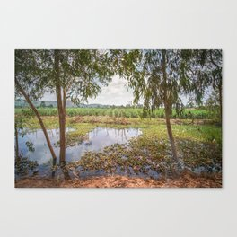 Countryside, Cambodia Canvas Print
