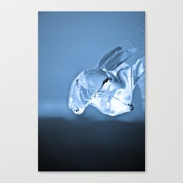 Melting Canvas Print