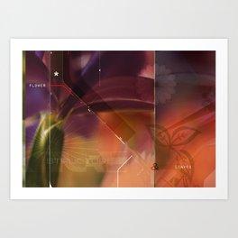 flower structure Art Print