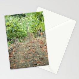 Vineyard Winery Stationery Cards