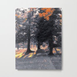 Fall Sunset in the Northwoods Metal Print