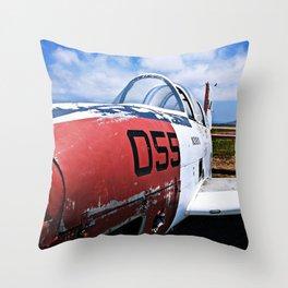 055 Throw Pillow