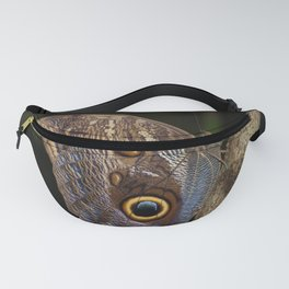 Owl butterfly in Costa Rica - Tropical moth Fanny Pack