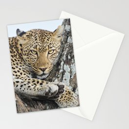 Wild leopard Stationery Cards
