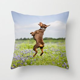 Spring In Texas Throw Pillow