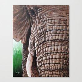 Dusty Tusk Canvas Print