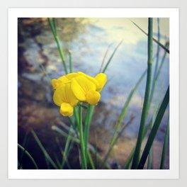 Lonely Flower Art Print