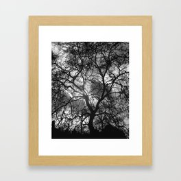 Dramatic London Tree Silhouette Framed Art Print