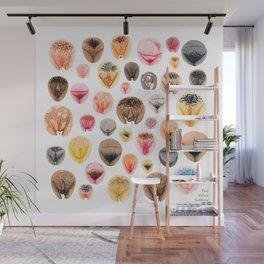 Vulva Variety Wall Mural