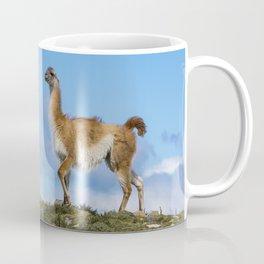 A Guanaco, in Patagonia, Chile. Coffee Mug
