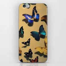 Delicate Auras iPhone & iPod Skin