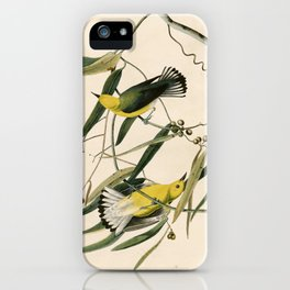 Prothonotary Warbler, Birds of America by John James Audubon iPhone Case