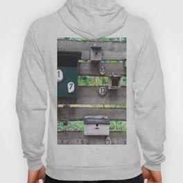 Birdhouses Hoody