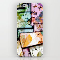 Picture 6 iPhone & iPod Skin