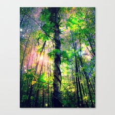 Forest of the Fairies Canvas Print