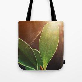 Grow: 004 Tote Bag