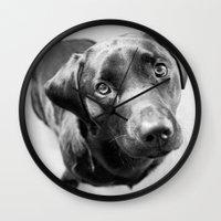 labrador Wall Clocks featuring Black Labrador by Simon's Photography