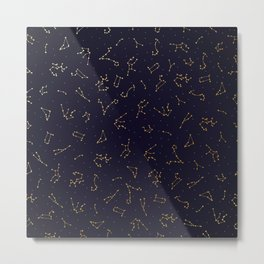Zodiac Constellations in the Night Sky Metal Print