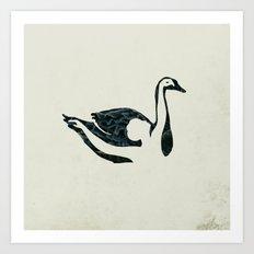 black swan song Art Print