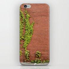 Climbing Vines iPhone & iPod Skin
