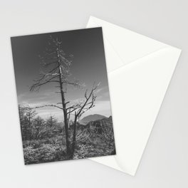 Biosculpture Stationery Cards