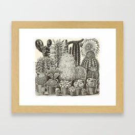 Cacti And Succulents Framed Art Print