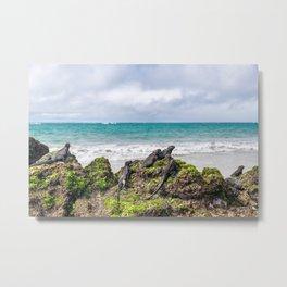 Galapagos Metal Print