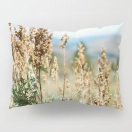 Ephemeral Drift Pillow Sham