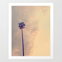 Los Angeles Palm Tree Pink Sky Art Print