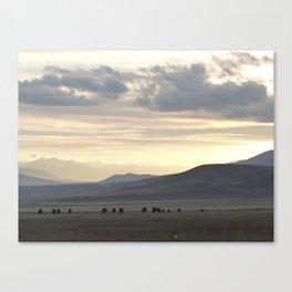 Sunset at Suusamyr valley, Kyrgyzstan Canvas Print