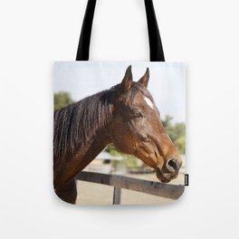 Handsome Gulliver Tote Bag