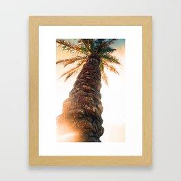 Pretty Palm Framed Art Print