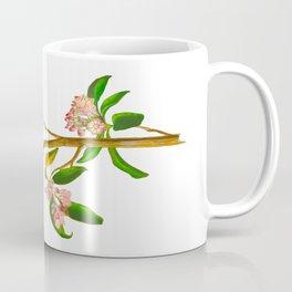 Cuvier's Regulus Coffee Mug
