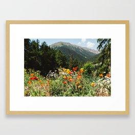 Mountain garden Framed Art Print