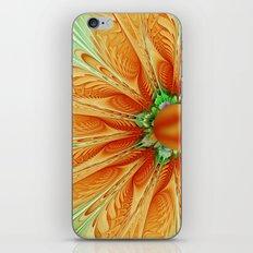 Summer Mood iPhone & iPod Skin