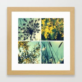 Wander Through Spring II Framed Art Print