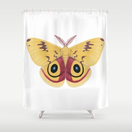 io moth (Automeris io) male specimen 1 Shower Curtain