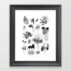 All the wild Framed Art Print