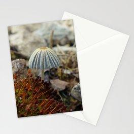 Tiny Toadstool Stationery Cards
