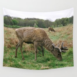 Deer Richmond Park, You're Stag-gering Wall Tapestry